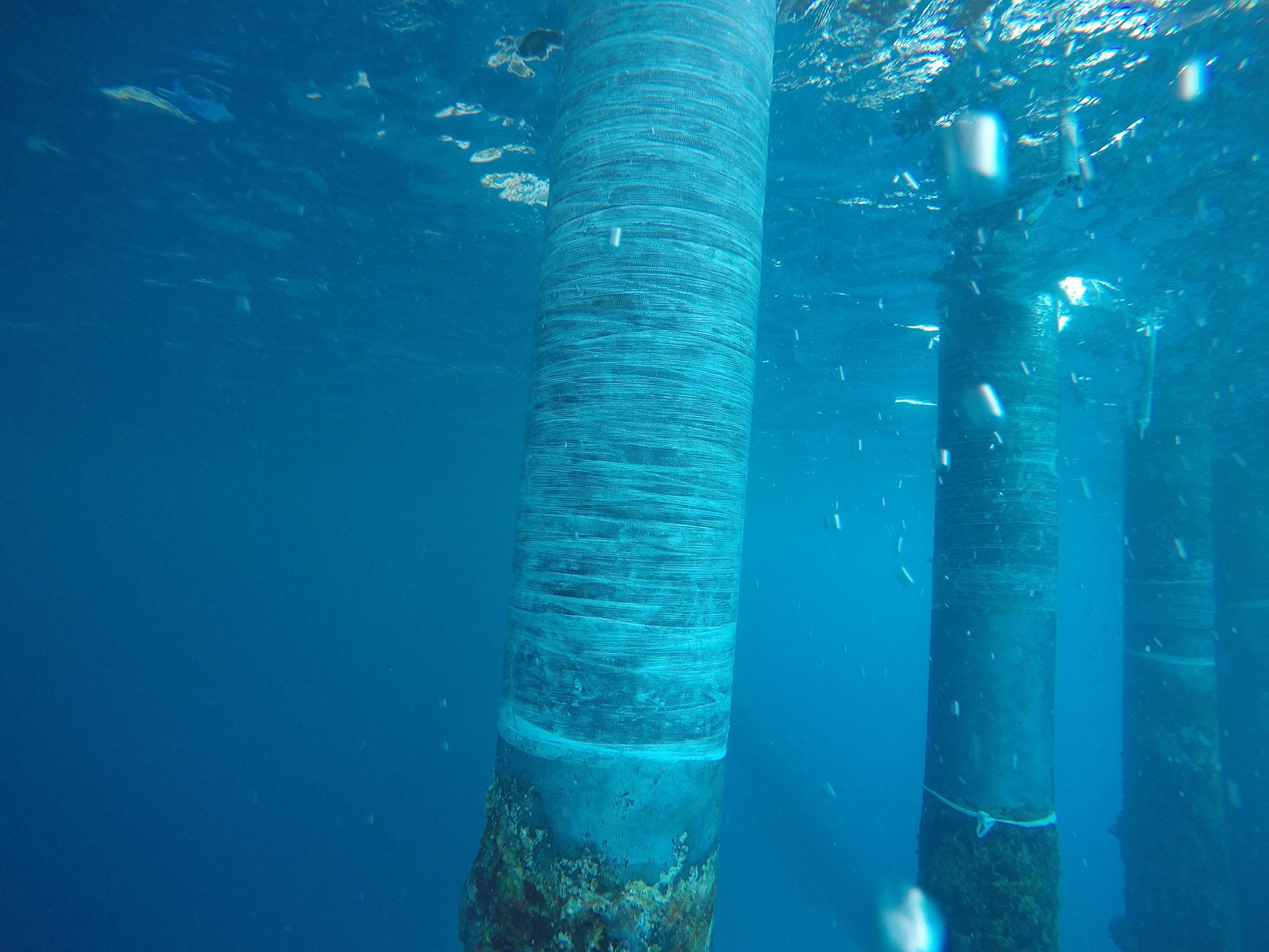 Bahamas Sub Sea-web